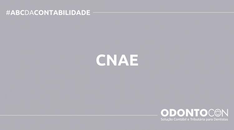 ABC DA CONTABILIDADE BLOG ODONTOCON 16 750x419 - O QUE É CNAE? SAIBA AGORA!